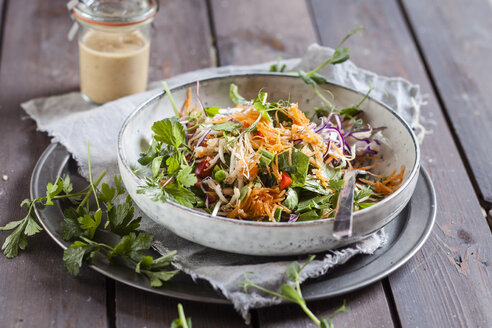 Rainbow salad with spinach leaves, peas, carrots, mung bean sprouts, quinoa, parsly, pea sprouts, red cabbage - SBDF002926