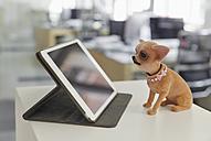 Digital tablet and wobbler on ledger in modern office - RHF001590