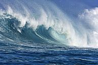 Big wave - RUEF001699