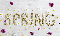 The word 'spring' shaped with dried beans surrounded by flowers - JRFF000728