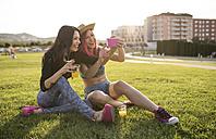 Friends sitting on grass taking selfies - JASF000826