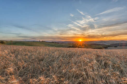 Italy, Tuscany, Val d'Orcia, Fields at sunset - LOMF000303