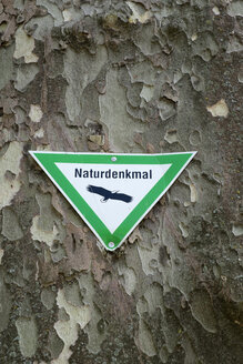 Nature protection sign at old plane tree - EL001755