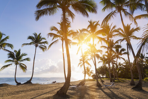 Dominican Rebublic, Tropical beach with palm trees at sunset - HSIF000455