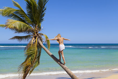 Dominican Rebublic, Young woman climbing palm tree at tropical beach - HSIF000470
