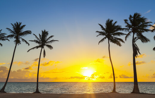 Dominican Rebublic, Tropical beach with palm trees at sunset - HSIF000473