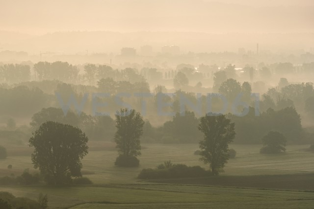 Germany, Constance district, Lake Constance, View to Radolfzeller Aachried in the morning, reedy marsh - ELF001774 - Markus Keller/Westend61