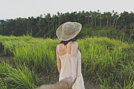 Back view of woman in nature holding hand with her boyfriend - KNTF000344