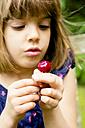 Hands of little girl holding cherry - LVF004958