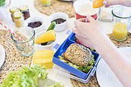 Boy packing lunch box with healthy food - MJF001850