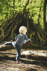 Little boy playing in forest - SBOF000136