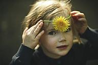 Portrait of girl with dandelion - SBOF000157