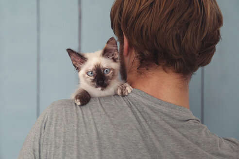 Back view of man with kitten on his shoulder - RTBF000236