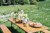 Beer table set with fruit and drinks on meadow - MJF001900