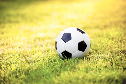 Soccer ball on a meadow - HAPF000569
