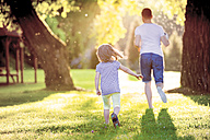 Back view of father and his little daughter running on a meadow in the park - HAPF000575