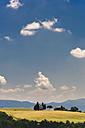 Italy, Tuscany, Siena, typical landscape - FMOF000057