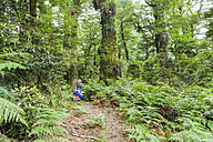 New Zealand, North Island, Te Urewera National Park, female hiker resting along trail gazing at trees - GWF004789