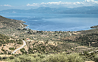 Greece, Panormos, road, olive plantations and the sea - DEGF000905