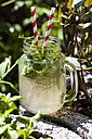 Homemade lemonade with a variety of herbs - SBDF003001