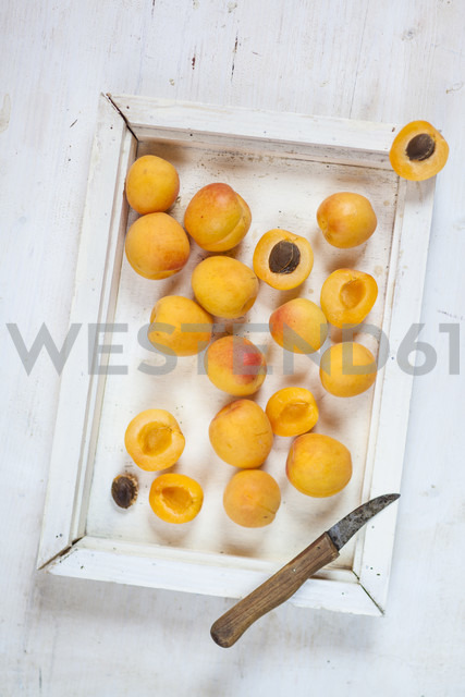 Wooden tray with apricots - SBDF003007