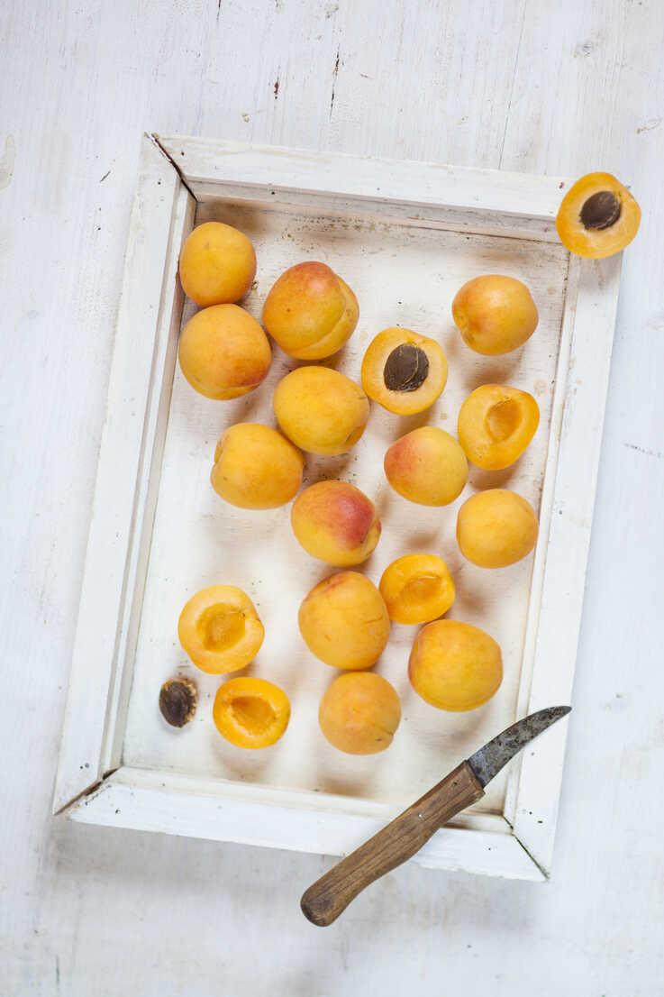 Wooden tray with apricots - SBDF003007 - Susan Brooks-Dammann/Westend61