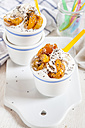 Frozen Yogurt with grilled apricot and chia seeds - SBDF003013