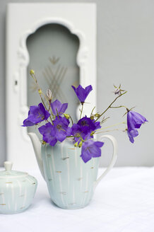Bellflowers in coffee can - GISF000225