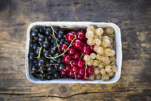 Cardboard box of black, red and white currants - LVF005097