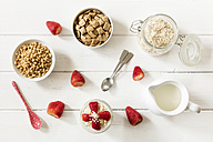 Bowls of whole meal oat cushions and oatmeal flakes, glass of porridge, strawberries and a milk jug - EVGF003013