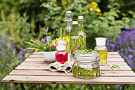 Different herb oils, thyme, rose, lavender, salve, rosemary and saint john's wort - MYF001698