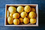 Lemons in wooden box on blue wood - KIJF000580