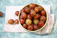 Bowl of red gooseberries - SARF002819