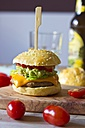 Sesame roll with burger, avocado cream, salad, ketchup and tomatoes - YFF000555