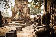 Thailand, Ayutthaya, Wat Mahathat at Historical Park - GIOF001290