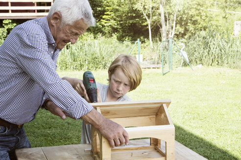 Grandfather and grandson building up a birdhouse - RBF004754
