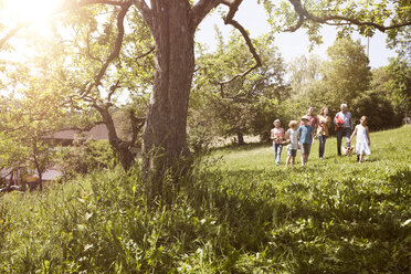 Extended family walking with picnic basket in meadow - RBF004790
