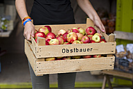 Woman holding crate of apples, partial view - KLRF000431