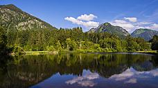 Germany, Bavaria, Allageu, Upper Allgaeu, Moorweiher near Oberstdorf - WGF000908
