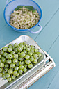Gooseberries on scale - GISF000228
