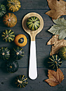 Ornamental pumpkins, wooden spoon and autumn leaves - RTBF000252