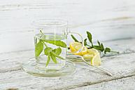 Glass of fresh peppermint tea - ASF005963