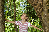 Little boy looking up to tree - TCF005028
