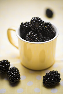 Blackberries in a cup - CZF000264