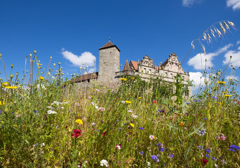 Germany, Bavaria, Central Franconia, Cadolzburg, castle and flower meadow - SIE007081