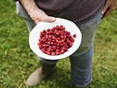 Woman holding bowl with Japanese Wineberries - HAWF000951