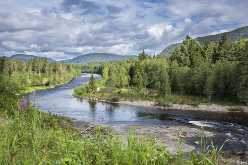 Norway, Southern Norway, Telemark, Notodden, Heddal, Heddol river - STSF001067