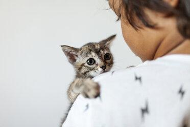 lLttle boy holding kitten on his arm - VABF000736