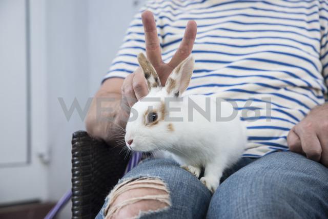 Rabbit on lap of owner - CHPF000260