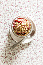 Strawberry frozen yogurt, topping oat flakes - EVGF003060